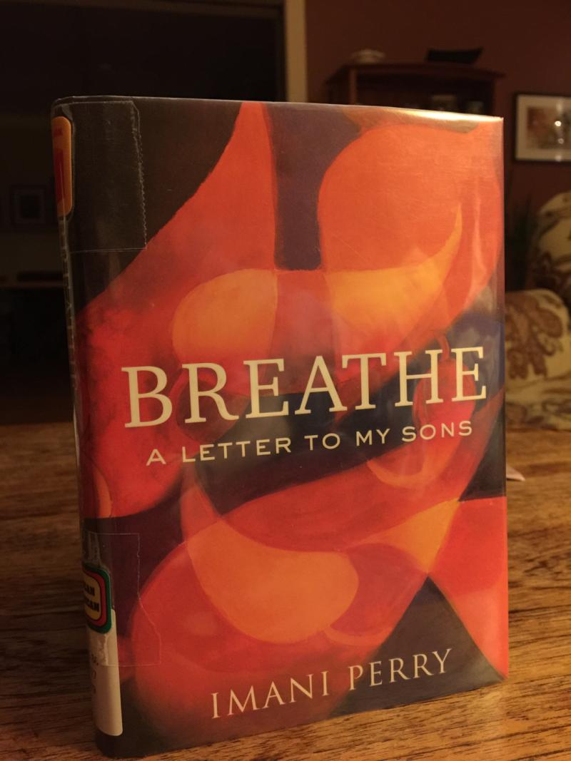 Picture of the book Breathe: A Letter to My Sons